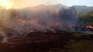 Los Ranchos plantation Venezuela fire