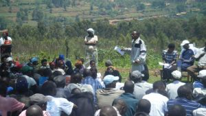 Rwanda mosquito net distribution