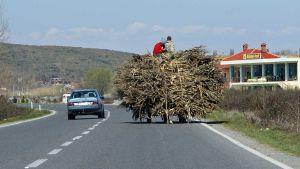 Albania road