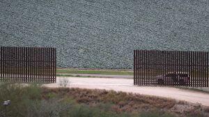 American wall
