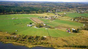 Baltic farmers