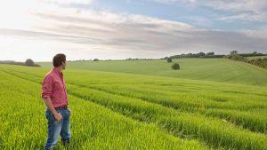 British farming
