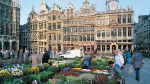 Brusells