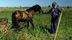 Bulgaria farm