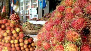 Cambodia fruit