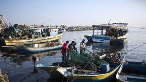 Gaza fishing