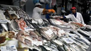 Global Sustainable Seafood Initiative