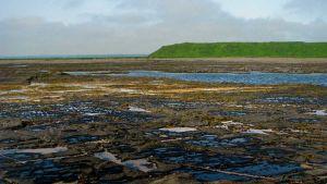 Kronotsky Bay