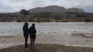Negev desert rain