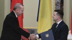 Recep Tayyip Erdogan and Volodymyr Zelensky
