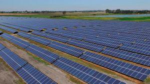 Essex Solar Farm