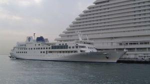 Luminous Cruise