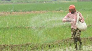 Farmer fertilizer