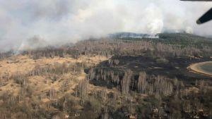 Forest fire near Chernobyl