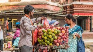 Nepal food market