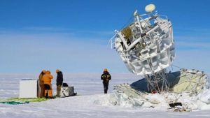 Antarctic Impulsive Transient Antenna