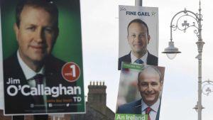 Fianna Fail, Fine Gael and Green Party
