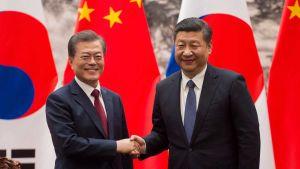 Moon Jae-in Xi Jinping