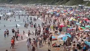 People flock to England's coast