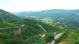 Quang Ngai province