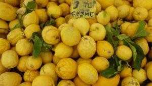 Turkish citrus