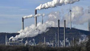 U.S coal