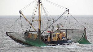 UAE fishing vessel