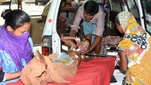 Bihar encephalitis