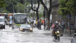 Heavy rains leave seven dead in Brazil