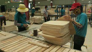 Vietnam wood