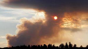 Wildfires in Algeria
