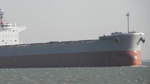 Bulk carrier Bliss