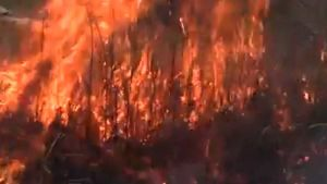 Fire in Donbas