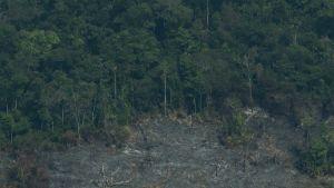 Chile Amazon fire