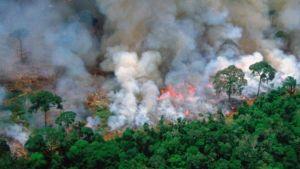 Huge wildfires in Amazon