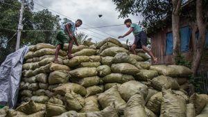 Myanmar charcoal