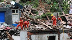 Typhoon Lekima losses