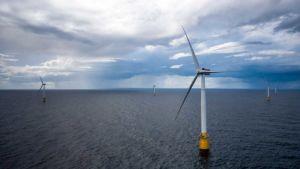 California offshore wind