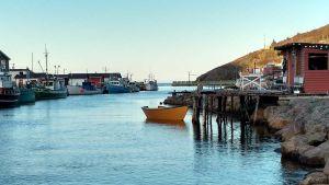 Fishery in Newfoundland