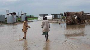 Niger flood