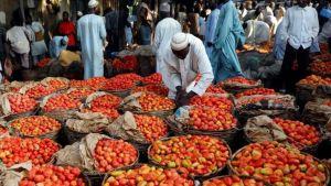Nigeria tomatoes