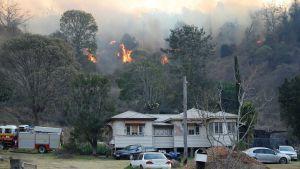 Sydney wildfire
