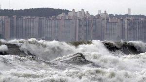 Typhoon Lingling Korea