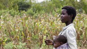 Botswana woman farmer
