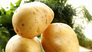 Iran potato