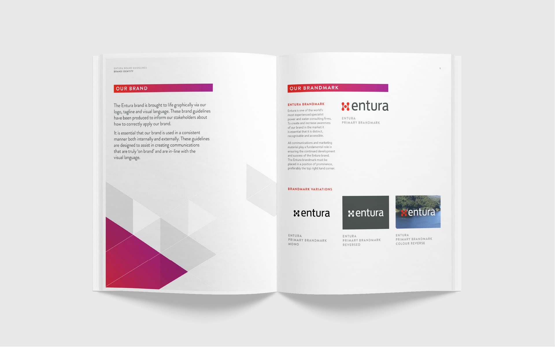 Entura-Style-Guide-Design