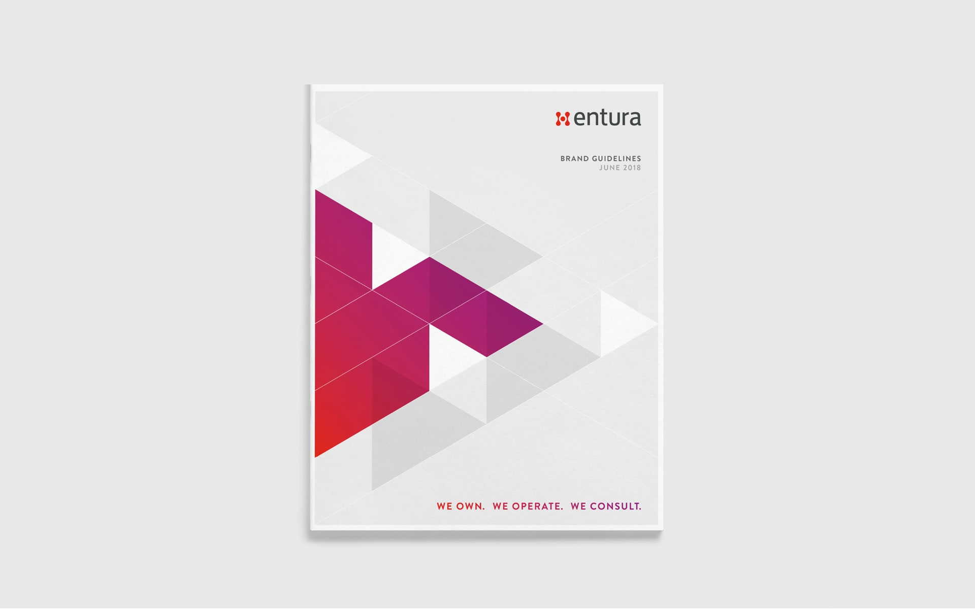 Entura-Brand-Refresh-Brochure-Design