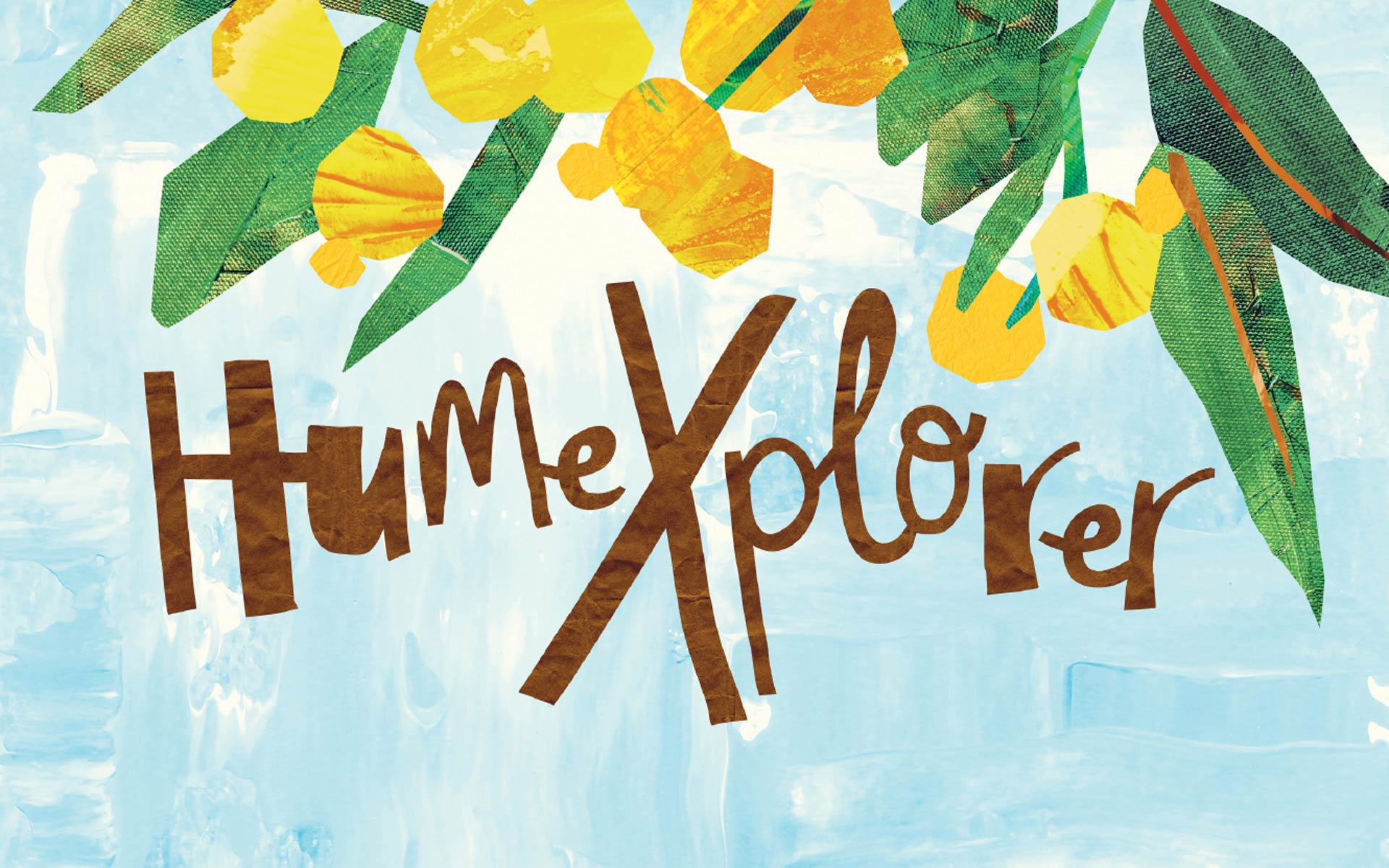 HumeXplorer Illustration and Design