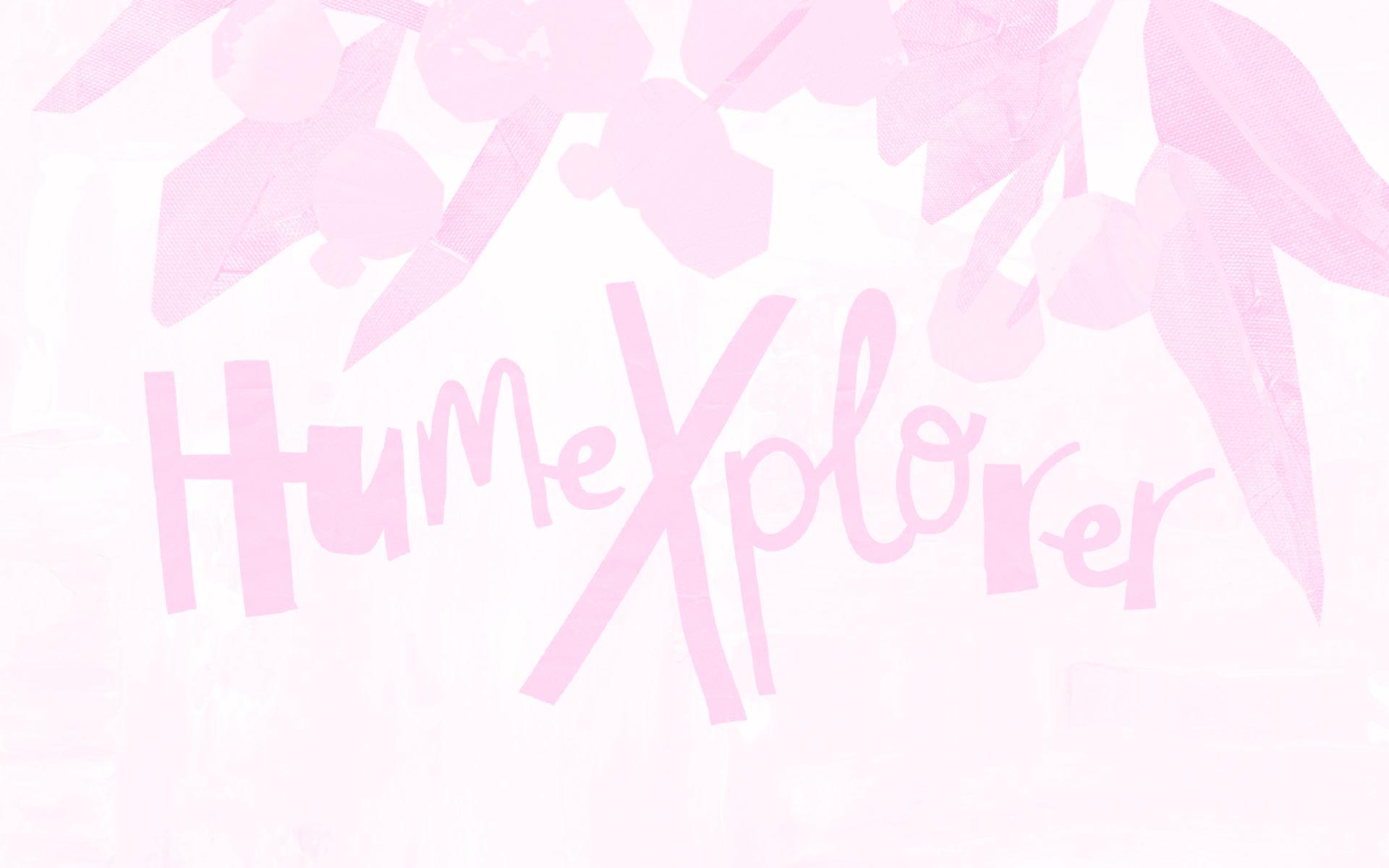 HumeXplorer Illustration and Design