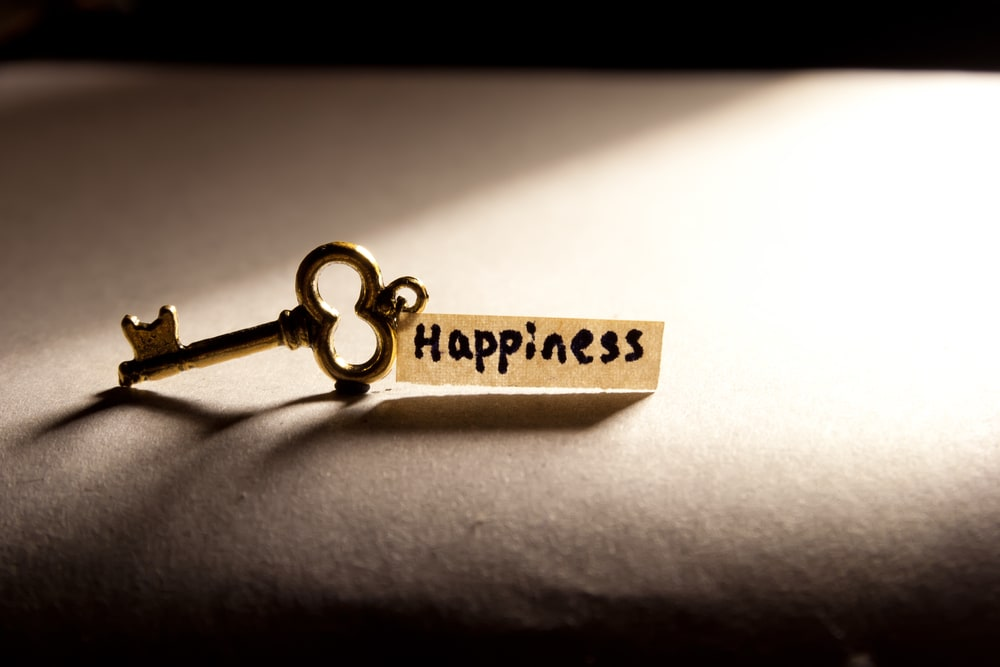 Balancing wealth and happiness